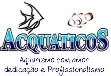 ACQUATICOS Aquarismo com  Amor  Dedicação e Profissionalismo